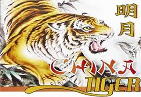 China Tiger Restaurant New Brighton